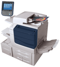 Printing and web services sydney